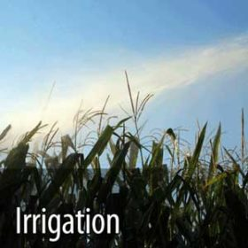 ozone for healthy irrigation water