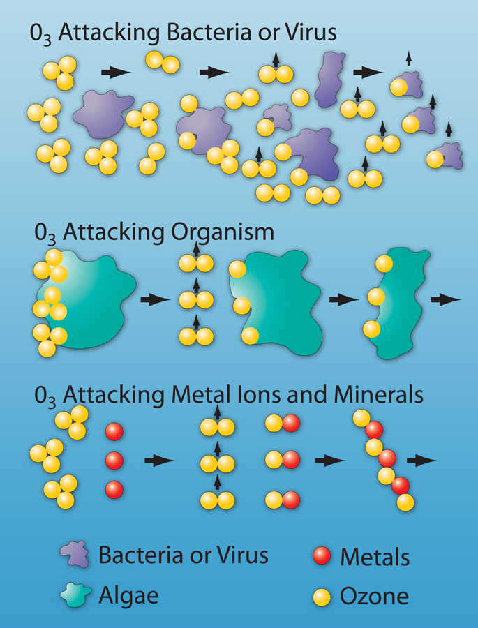 Ozone killing bad stuff diagram