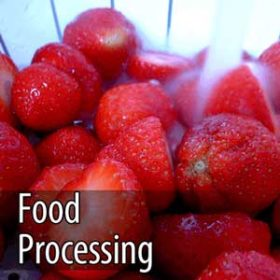 ozone for healthy food processing